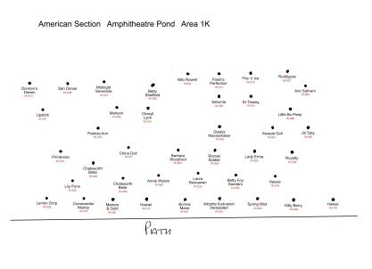 1k-american-id