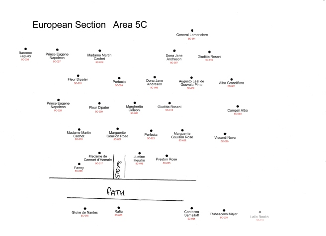 5c-european-id