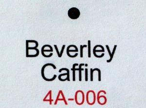 Camellia japonica 'Beverley Caffin'