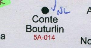Camellia japonica 'Conte Bouturlin'