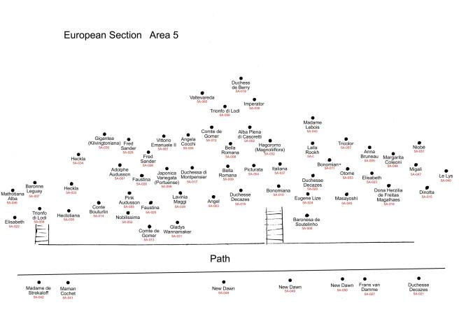 5A European