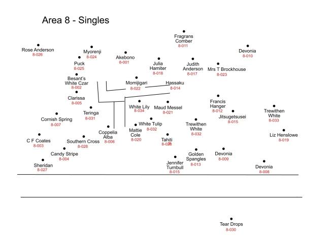 8-quarry-singles-id